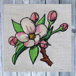 Apfelblüte 1010
